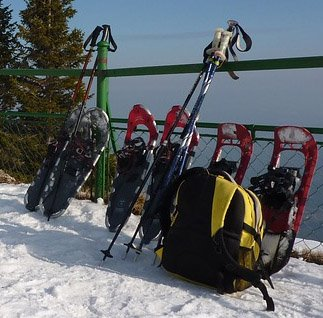 Use snowshoes during a story stroll at Lake Elmo Park Reserve Feb. 24.