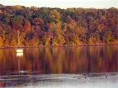 Sailboat on the St. Croix River by St. Croix Bluffs Regional Park