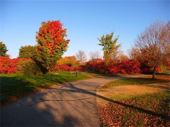 Fall campsite at Lake Elmo Park Reserve