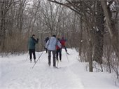 Skiing on a winter trail