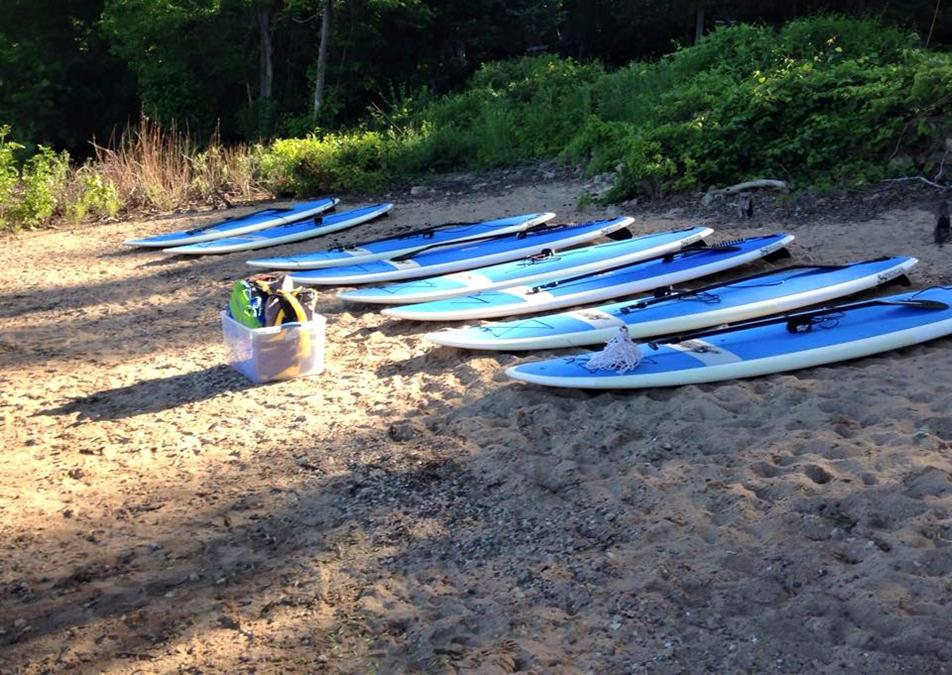 Stand-up paddleboards lined up at the rivers edge.