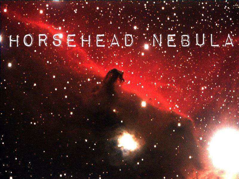 HORSEHEAD NEBULA IN THE CONSTELLATION ORION fb