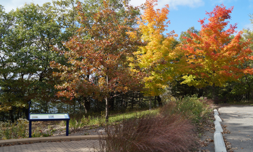 Square Lake Park In The Fall